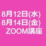 zoomwebiner 20200812-14